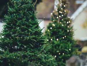 Simple Ways to Manage Stress During the Holidays